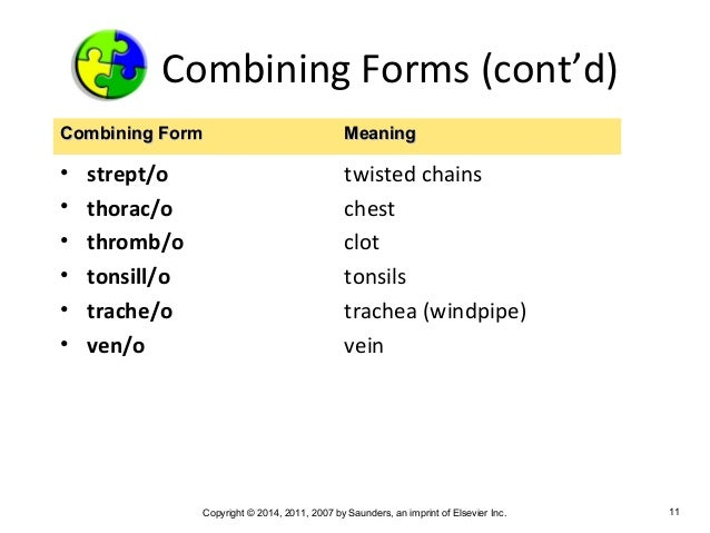 Medical Terminology Chapter 3