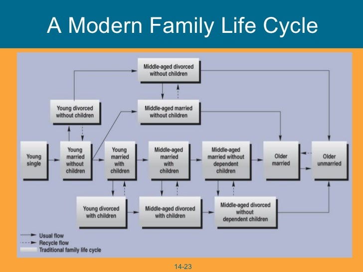 family life cycle thoery The stages of the marital and family life cycle describe the social, emotional, and  developmental tasks required to create and maintain coupleness throughout.