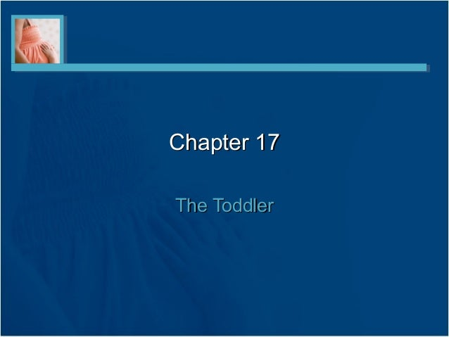Chapter 17Chapter 17The ToddlerThe Toddler