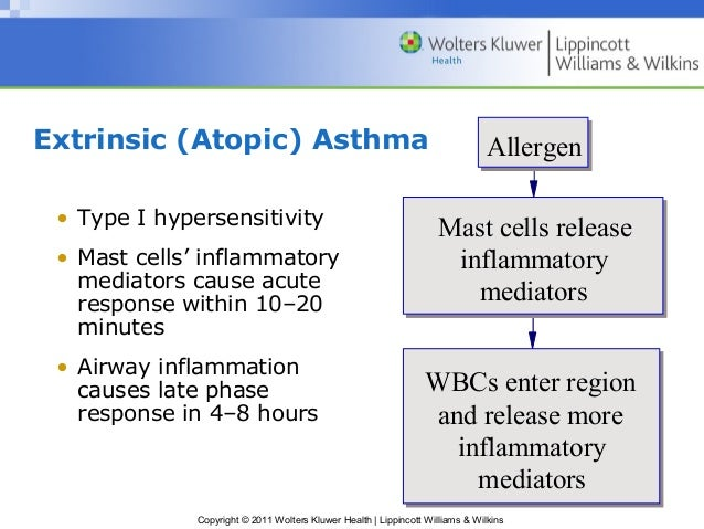 inflammatory mediators of asthma health essay Asthma is a chronic inflammatory disorder of the airways  they in turn induce  the production of mediators of inflammation (such as histamine and leukotrienes)  and cytokines  what constitutes an adverse health effect of air pollution.