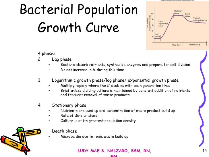 bacterial growth lab paper Bacterial growth refers to division of bacterium into two cells that process of division is known as binary fission this division is basically asexual t.
