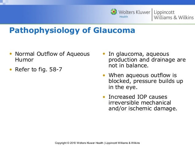 pathophysiology of glaucoma Glaucoma lecture series: a complete lecture on the pathophysiology of glaucoma presented by dr ramesh ayyala.