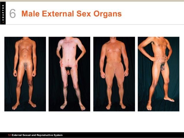 girl-two-sex-organ-in-one-men-amateur
