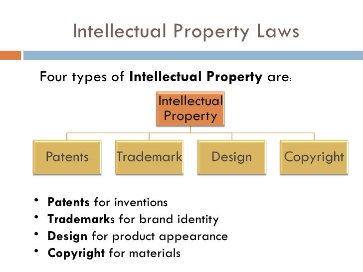 Intellectual Property Rights And Cyber Law Notes