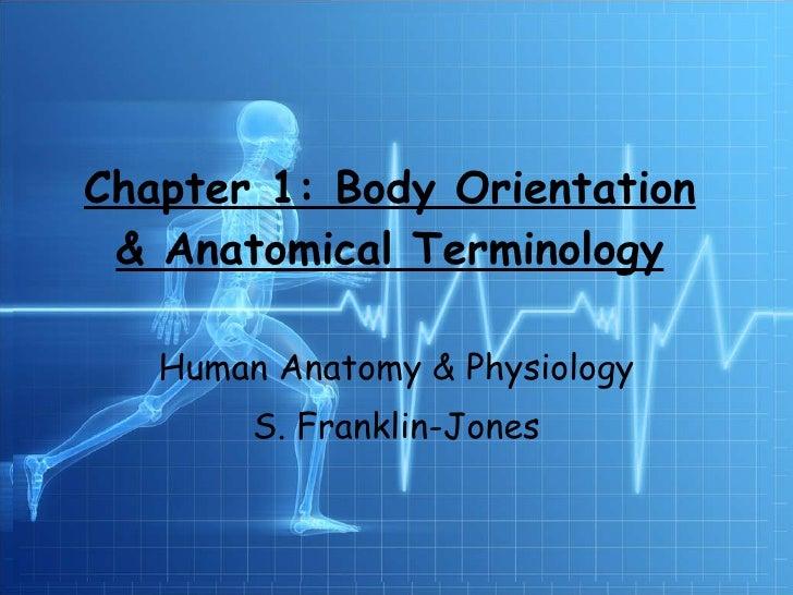 Chapter 1: Body Orientation & Anatomical Terminology Human Anatomy & Physiology S. Franklin-Jones