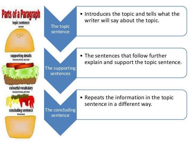 organizing an essay worksheet