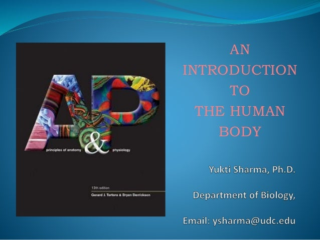Chapter 1 Introduction to Anatomy and Physiology