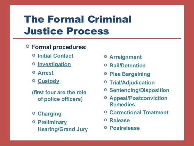 Criminal Procedure Policy Essay Sample