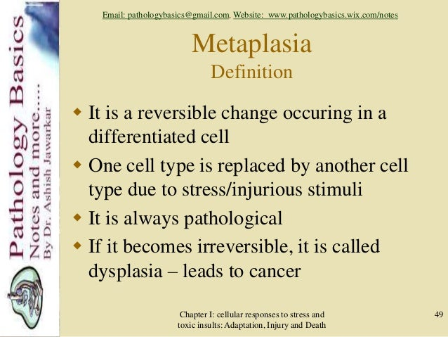 Cellular adaptations, injury and death   Lecture 1