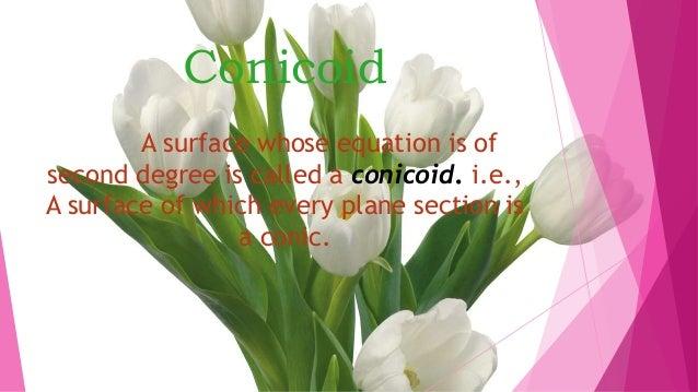 conicoid Slide 3