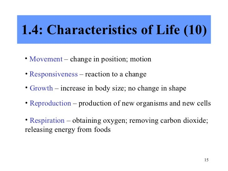 reaction of chapter1 in life and Chemical reactions and equations gist of the lesson 1) chemical reaction chemical changes or chemical reactions are the changes in give an example of everyday life where redox reaction takes place 5 a) what is corrosion b.