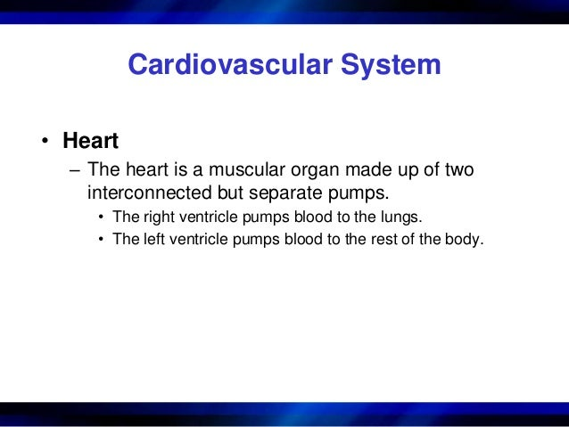 cardiovascular disorders case study 1 cardiovascular disease medical record information: hpi: rb is a 55 yo african american male marketing director referred to his family physician for evaluation of.
