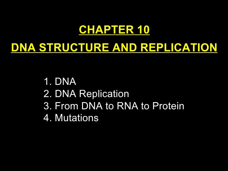 CHAPTER 10 DNA STRUCTURE AND REPLICATION <ul><li>DNA 2. DNA Replication </li></ul><ul><li>3. From DNA to RNA to Protein </...