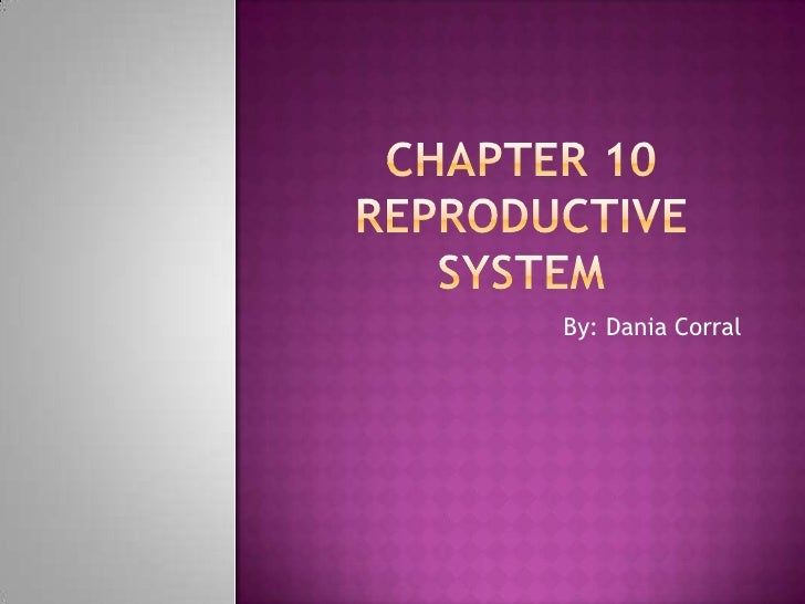 Chapter 10Reproductive system<br />By: Dania Corral<br />