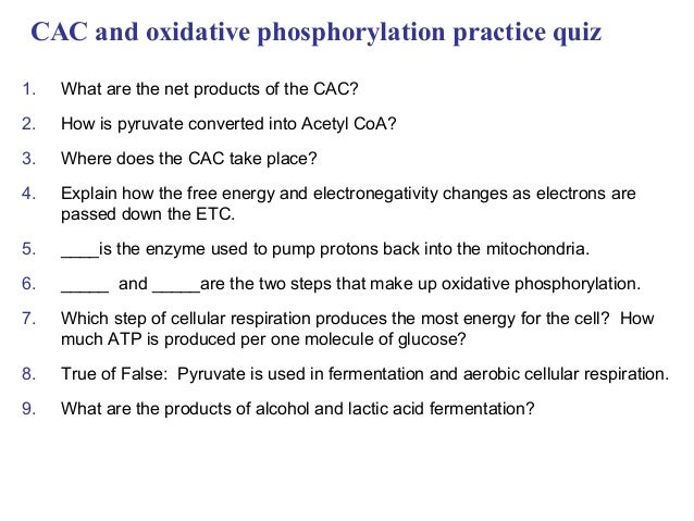 CAC and oxidative phosphorylation practice quiz1. What are the net products of the CAC?2. How is pyruvate converted into A...