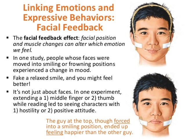 facial feedback hypothesis The facial feedback hypothesis suggests that our facial expressions influence our affective reactions in light of wagenmakers et al's (2016) failure to replicate strack, martin, and stepper's (1988) seminal demonstration of facial feedback effects, we conducted a meta-analysis on 286 effect sizes derived from 136 facial feedback.