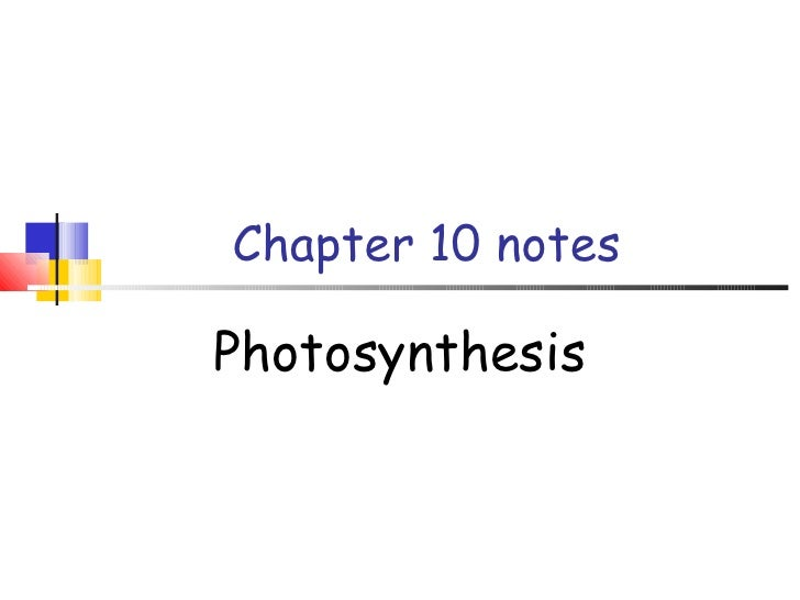 Chapter 10 notes Photosynthesis