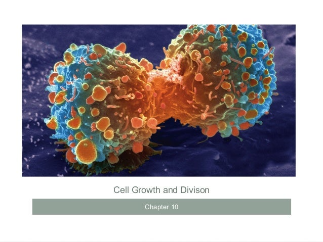 Cell Growth and Divison Chapter 10