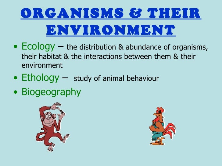 ethological principles in the study of animal behaviour Ethology, the comparative study of animal  gists, when dealing  with animal behavior, have  the fact explainable by the reafference principle.
