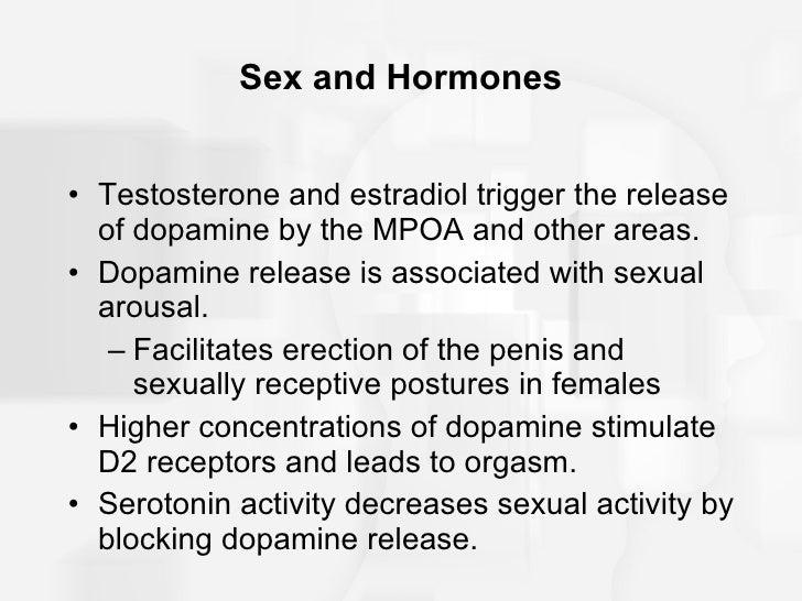 Hormones releases during sex for women