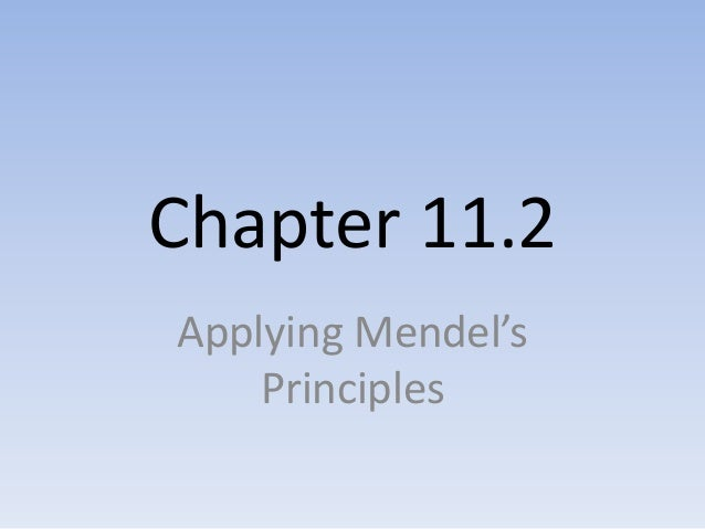 Chapter 11.2 Notes - Applying Mendel's Principles