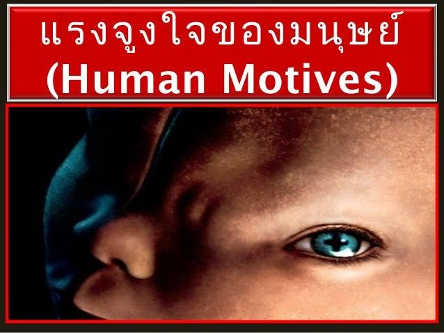 แรงจูง ใจของมนุษ ย์ (Human Motives)