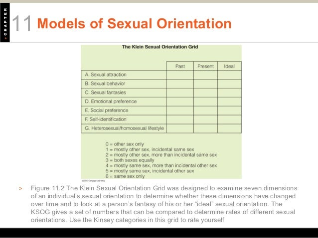 Seven dimensions of sexual orientation