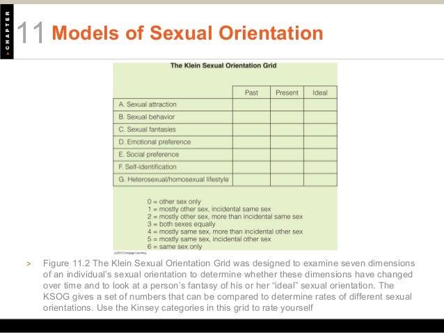 Seven dimensions of sexual orientation