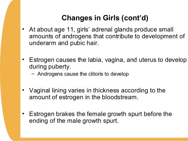 Thickness Of Pubic Hair Chapter11 Hdev