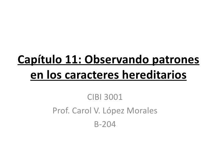Capítulo 11: Observando patrones  en los caracteres hereditarios                CIBI 3001      Prof. Carol V. López Morale...