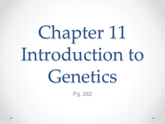 chapter 11 introduction to genetics. Black Bedroom Furniture Sets. Home Design Ideas