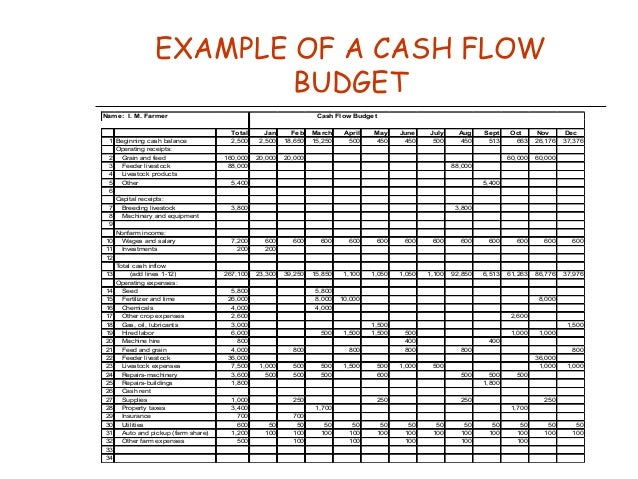 Chapter Cash Flow Budgeting