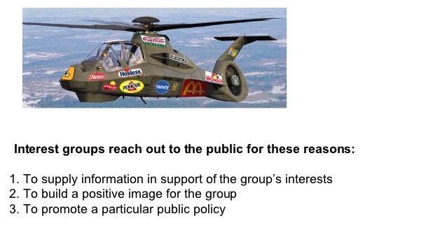 Political interest groups essay