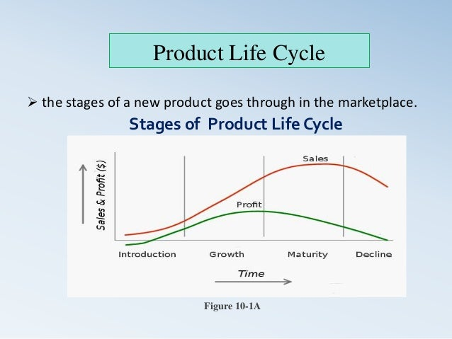 describe waht product life cycle and explain its stages As they grow and develop, brine shrimp go through a series of 14 to 17 different stages  brine shrimp life cycle learngenetics october 1, 2014.