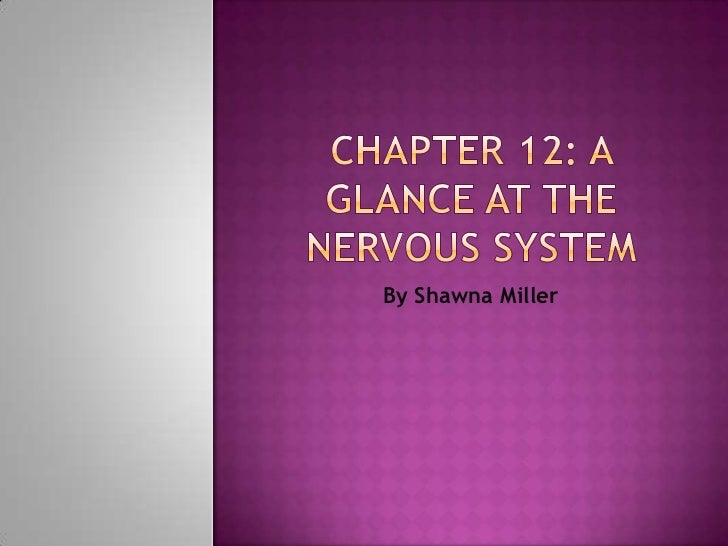 Chapter 12: a glance at the nervous system<br />By Shawna Miller<br />
