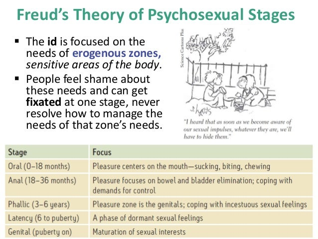 what are the implications of being fixated at stage in freud s theory Introduction sigmund freud believed that each stage of a sigmund freud's theory of and pedophiles on being fixated at the genital stage.