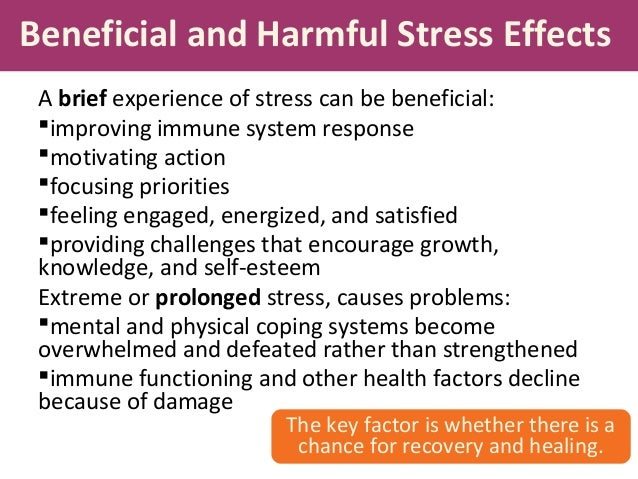 essays on stress and health Stress can lead to poor health and even injury  professionally written essays on this topic: effects of stress and balancing stress in the workplace.
