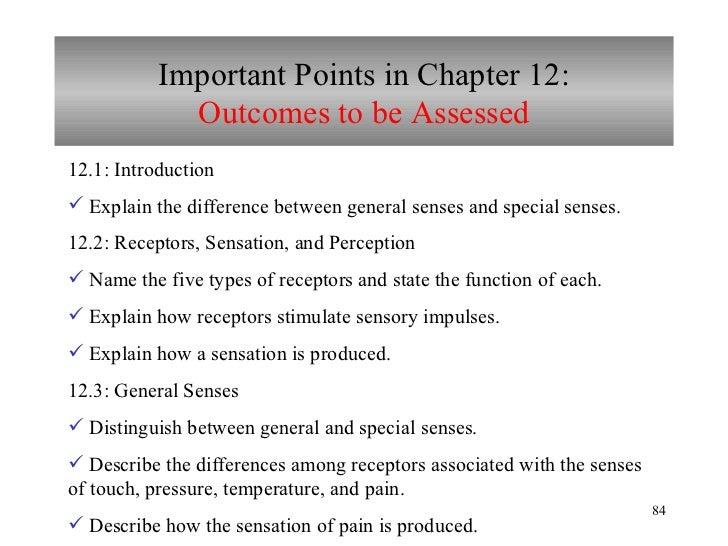 Chapter 12 Nervous System Iii Senses