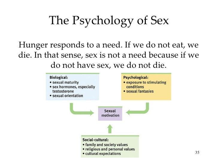 Sexual orientation ap psychology free