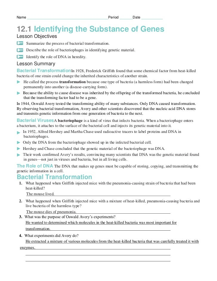 Chapter12 packet – Dna and Genes Worksheet Answers