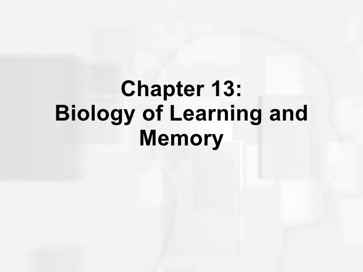 Chapter 13: Biology of Learning and Memory