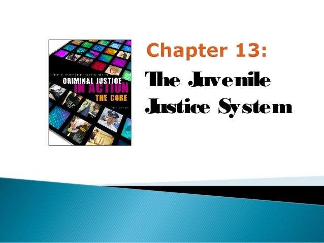 T J he uvenileJustice System