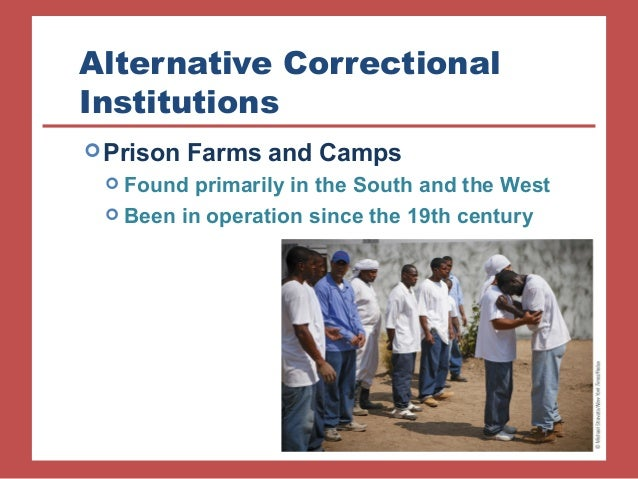 an analysis of shock incarcerations programs and alternative Alternative custody programs for youth  executive summary   boot camp prisons, or shock incarceration, have flourished in the united.