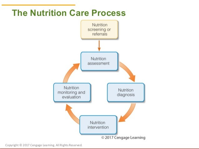 Chapter 13 Nutrition and care Assessment