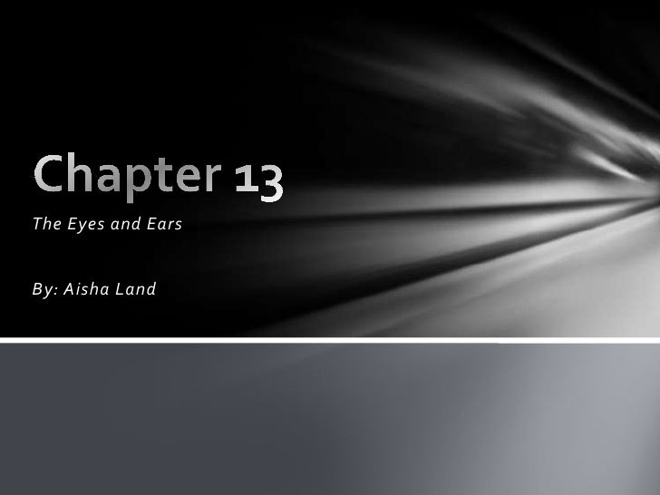The Eyes and Ears<br />By: Aisha Land<br />Chapter 13<br />