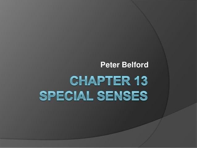 Peter Belford