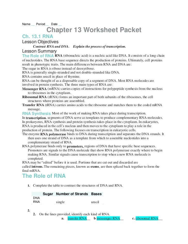Chapter13 worksheets – Dna Worksheet