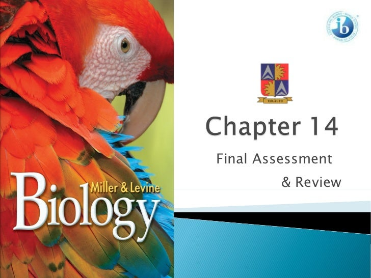 Chapter 14 Assessment & Review