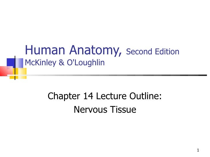Human Anatomy,  Second Edition McKinley & O'Loughlin Chapter 14 Lecture Outline: Nervous Tissue