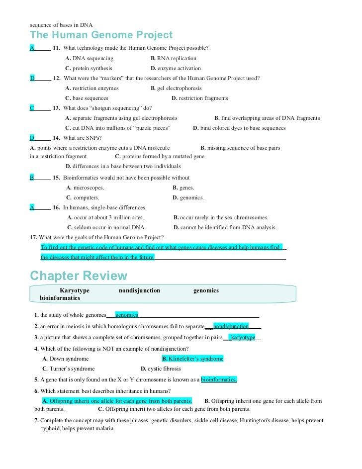 Chapter14worksheets